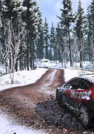 WRC 5_1